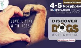 Discover Dogs Festival στο HELEXPO Μαρούσι 4-5 Noεμβρίου 2017