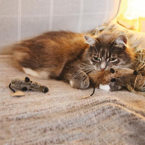 Παιχνίδι Γάτας Silvervine Mice