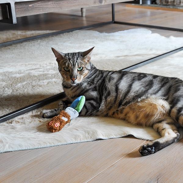 Παιχνίδι Γάτας Little Nippers Cat Boggle Owl
