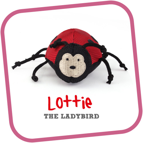 Lottie the Ladybird - Παιχνίδι Γάτας Beco Family
