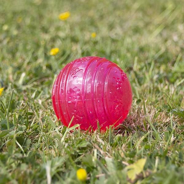 Παιχνίδι για Κουτάβια Αντιμικροβιακό - Biosafe Puppy Pink Ball