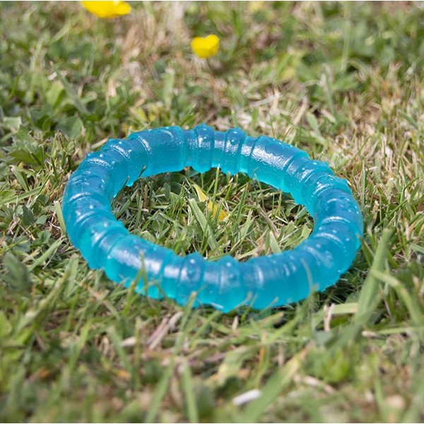 Παιχνίδι για Κουτάβια Αντιμικροβιακό - Biosafe Puppy Blue Ring