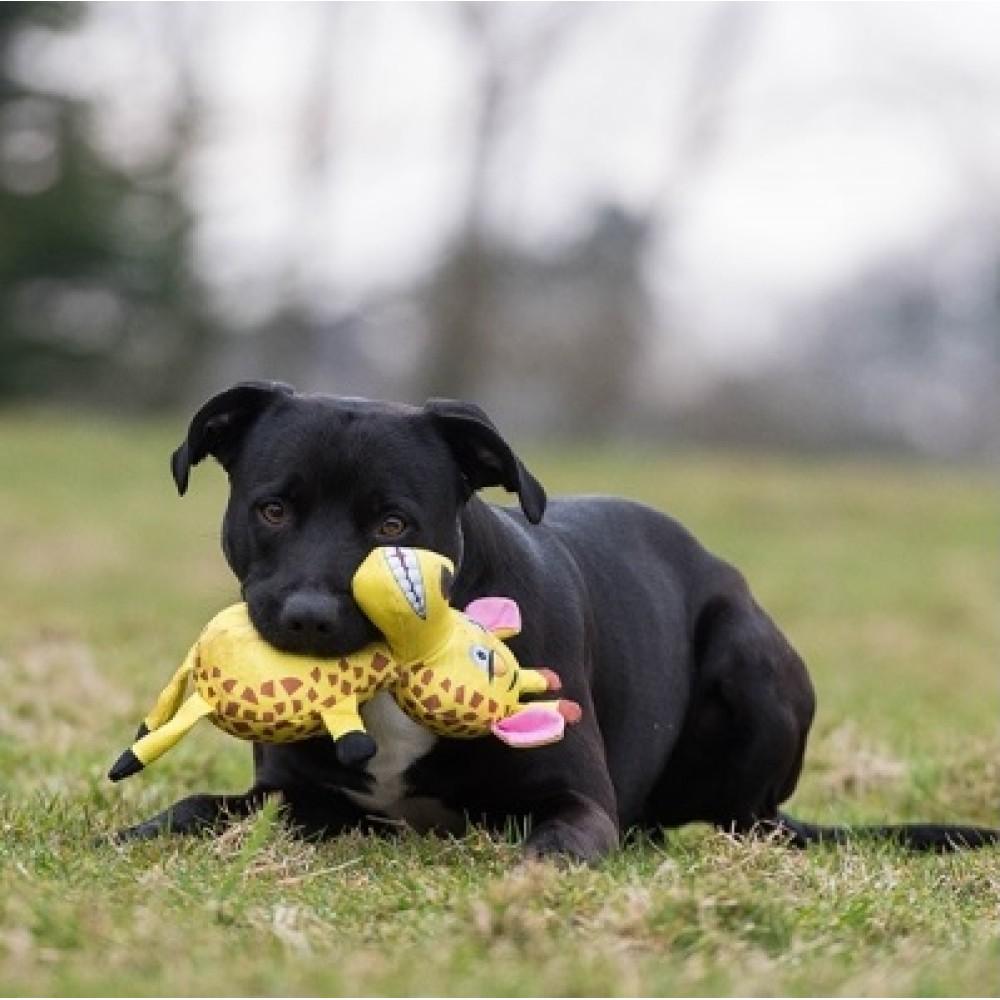 Παιχνίδι Σκύλου Jolly Doggy Tough Safari Giraffe