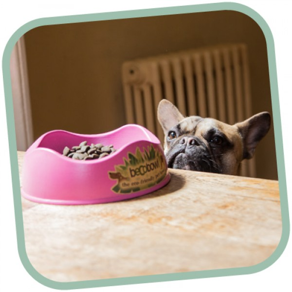 Μπoλ Φαγητού - Νερού Beco για Σκύλο