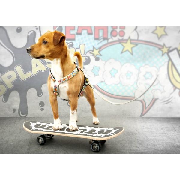 Επιστήθιο Σκύλου Max & Molly Comics