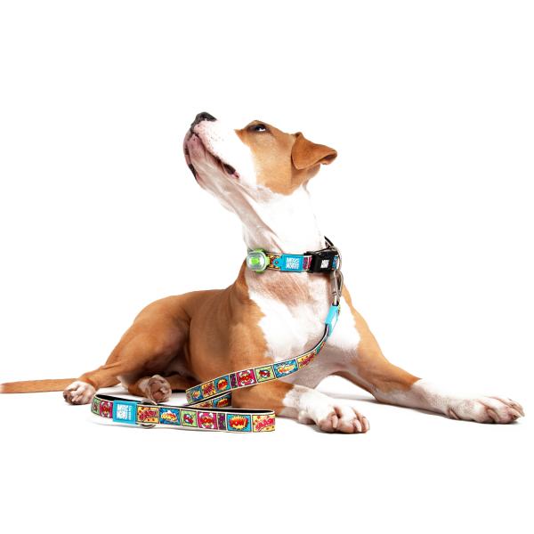 Περιλαίμιο Σκύλου Max & Molly Latte
