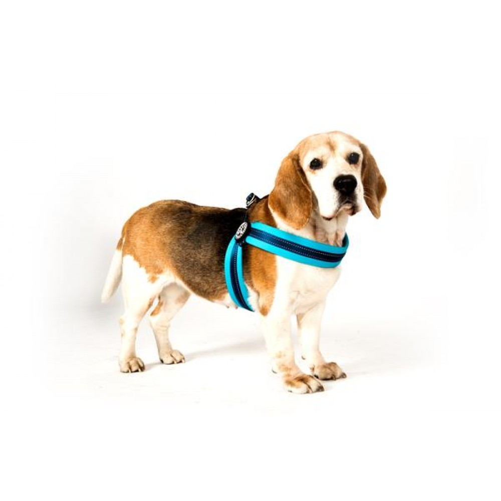 Επιστήθιο Σκύλου Q-fit Max & Molly Matrix Sky Blue