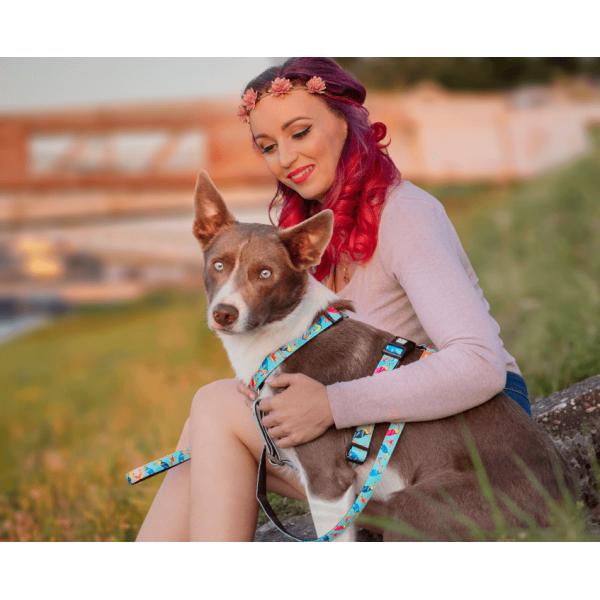 Περιλαίμιο Σκύλου Max & Molly Paradise
