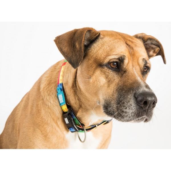 Περιλαίμιο Σκύλου Max & Molly Heroes
