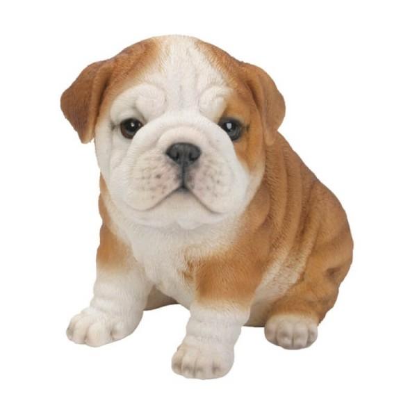 Διακοσμητικό Ομοίωμα Σκύλου Real Life English Bulldog Puppy