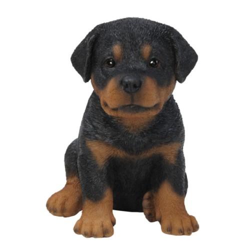 Διακοσμητικό Ομοίωμα Σκύλου Real Life Rottweiler Puppy